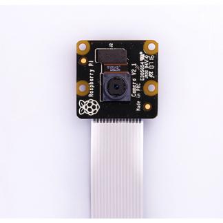 camera noir raspberry pi